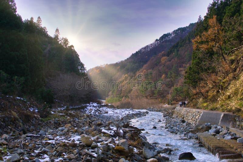 Aguas termales del mono, valle del infierno, Jigokudani, Japón foto de archivo