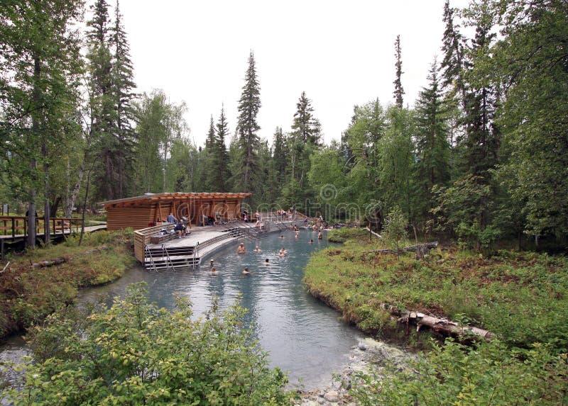 Aguas termales del río de Liard en la Columbia Británica, Canadá foto de archivo
