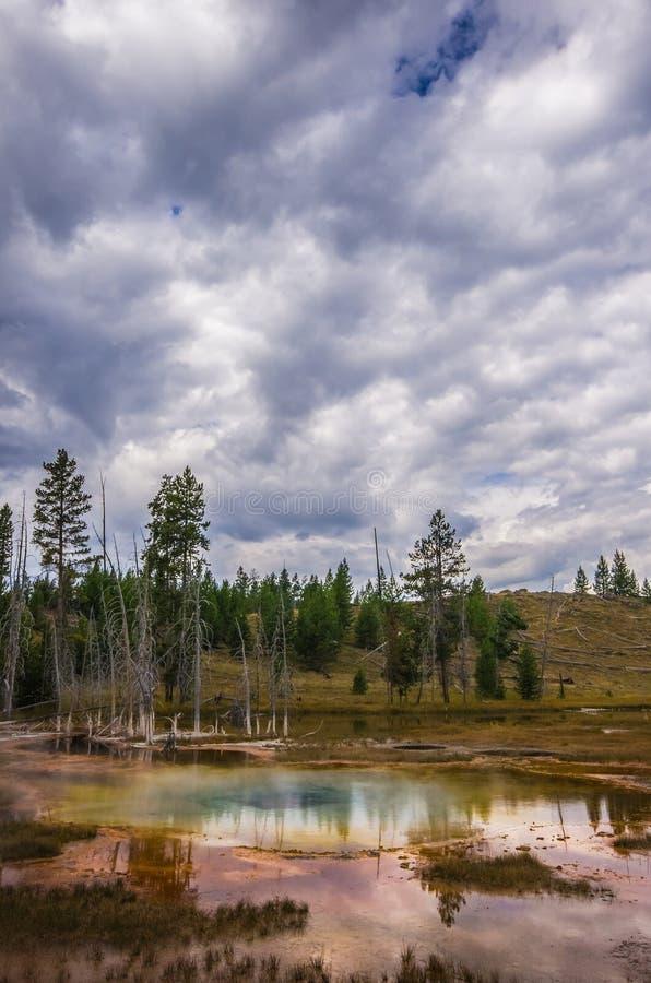 Aguas termales en el parque nacional de Yellowstone imagenes de archivo