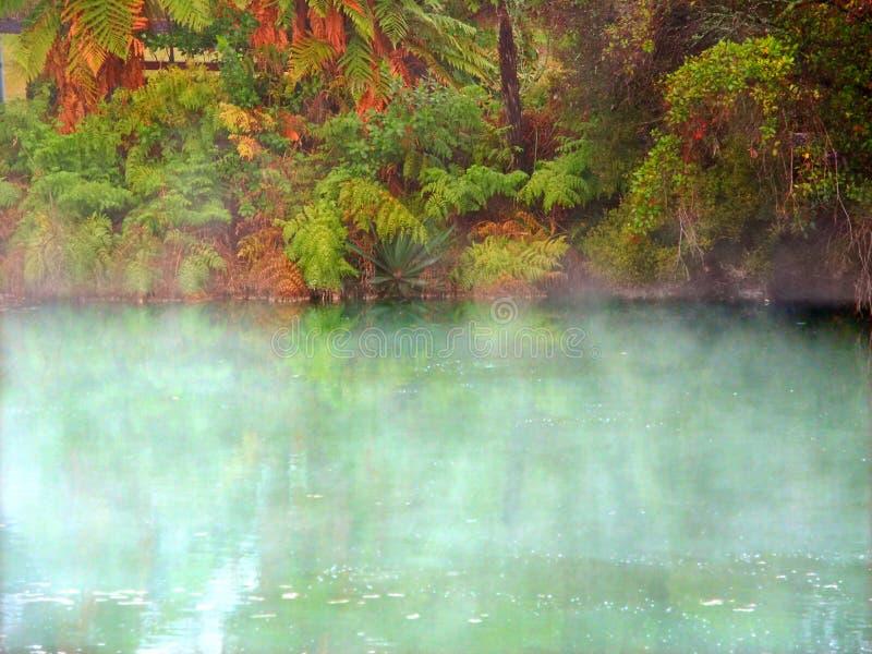 Aguas termales Nueva Zelanda del parque de Kuirau fotos de archivo libres de regalías