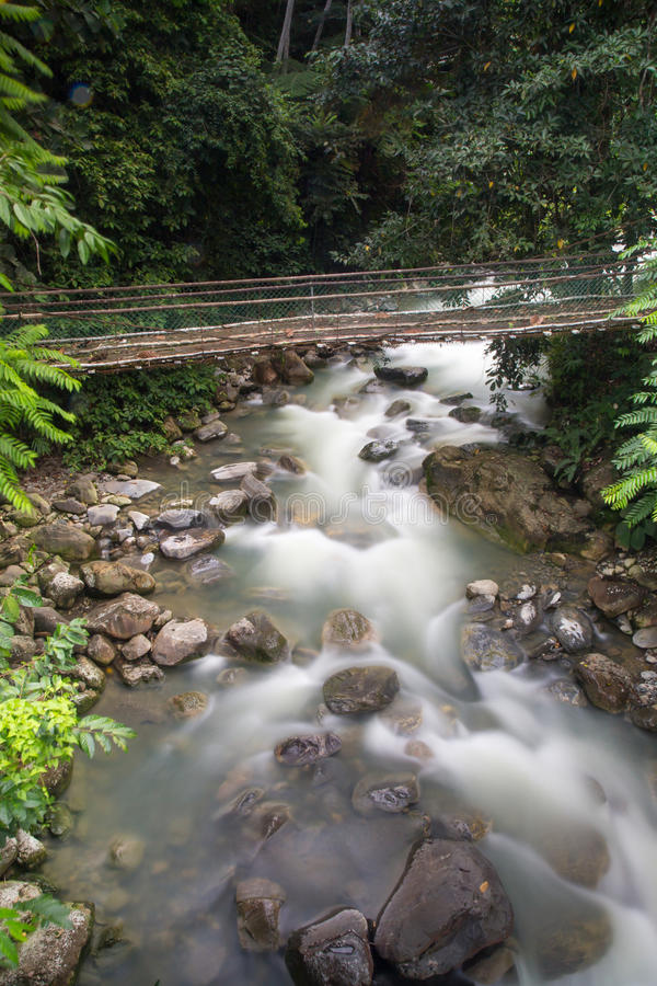 Aguas termales Poring, Sabah, Borneo Malasia imagen de archivo