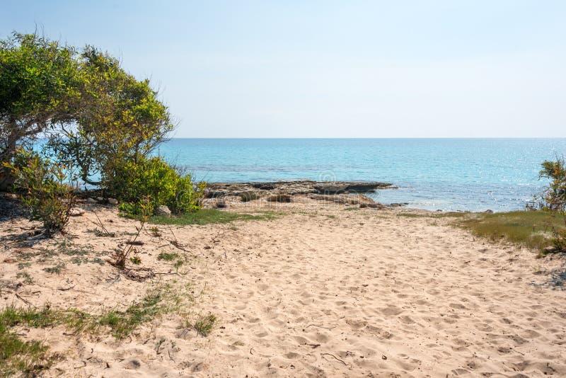 Aguas y rocas cristalinas de la piedra arenisca del mar Mediterráneo, Chipre Paisaje tropical de la bahía del mar, costa costa de imagen de archivo libre de regalías