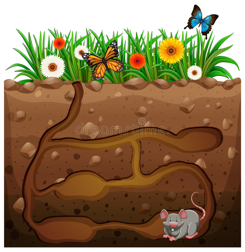 Agujero de rata debajo del jard n ilustraci n del vector for Ahuyentar ratas jardin