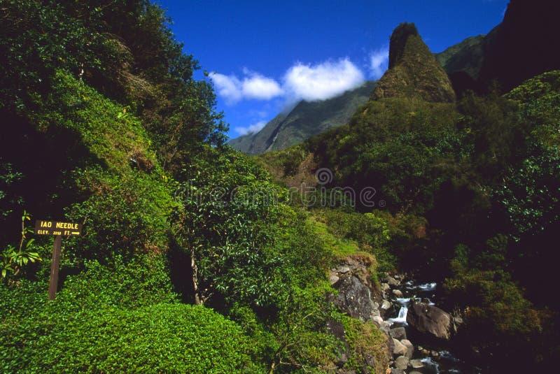 Agulha Maui de Iao imagem de stock royalty free