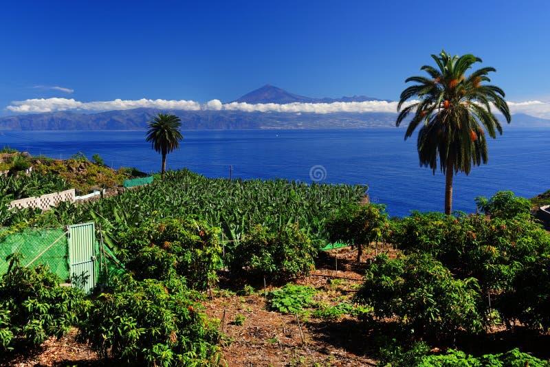 Agulo and El Teide Volcano. La Gomera, Spain, Europe stock images