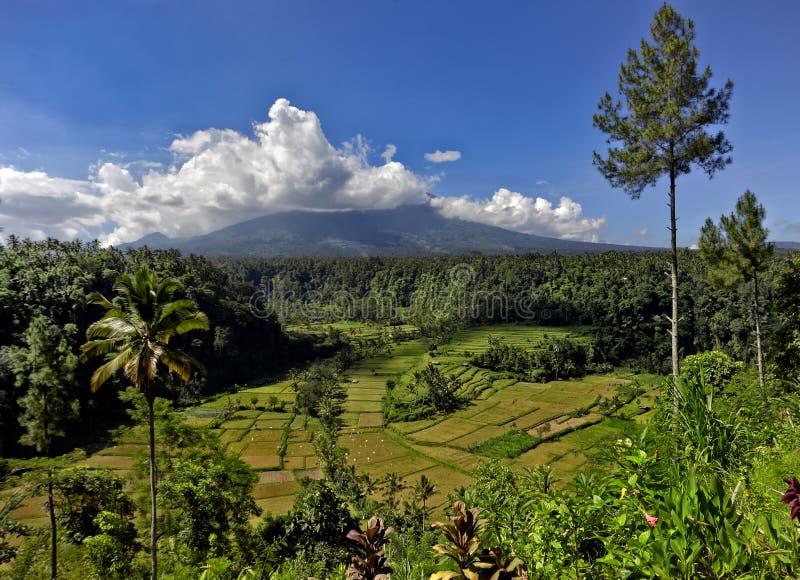 agung gunung wulkan obrazy stock
