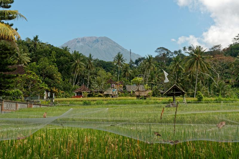 Agung wulkan w Bali fotografia stock