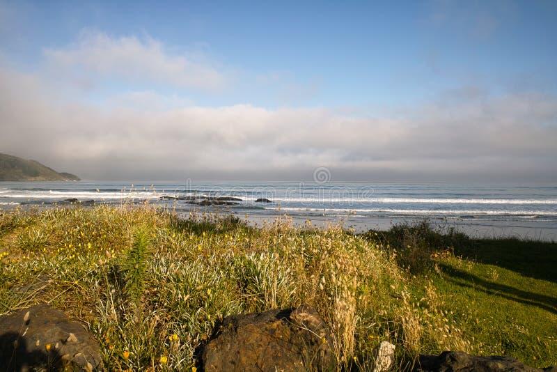 Ahipara strand arkivfoto