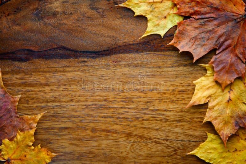 Ahornblätter auf dem hölzernen Hintergrund lizenzfreies stockbild