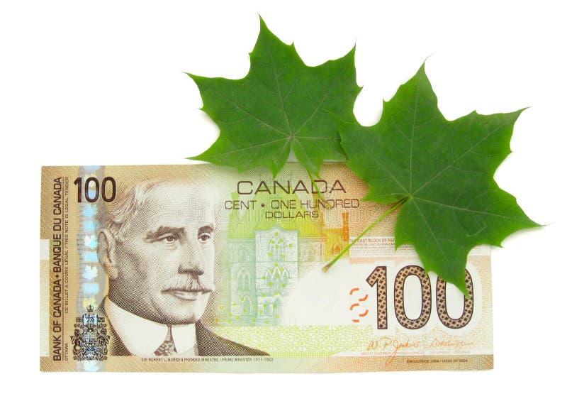Ahornblätter und kanadischer Dollar stockfoto