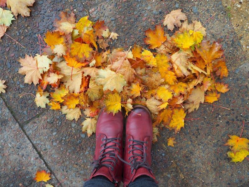 Ahornblätter vereinbarten in einer Herzform auf dem Boden stockfotografie