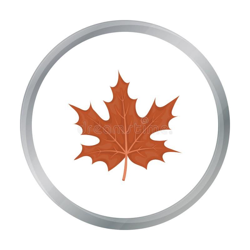 Ahornblattikone in der Karikaturart lokalisiert auf weißem Hintergrund Kanadischer Danksagungs-Tagessymbol-Vorratvektor stock abbildung