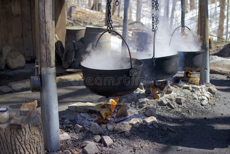 Ahornstroop die van sup van de boom maken royalty-vrije stock afbeelding