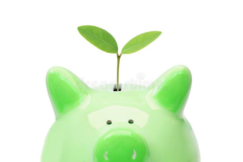 Ahorro verde fotografía de archivo libre de regalías