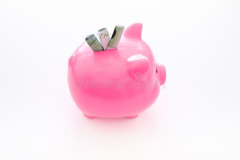 ahorros Moneybox en la forma del cerdo con los billetes de banco que caen en ella en el espacio blanco del fondo para el texto fotografía de archivo libre de regalías