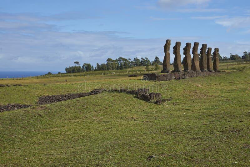 Ahu Kivi,复活节岛,智利 免版税库存图片