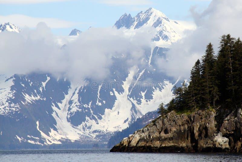 aialik podpalany fjords kenai park narodowy zdjęcia royalty free