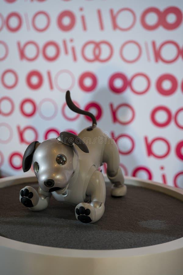 AIBO-Roboter auf Anzeige bei Sony Expo 2019 lizenzfreie stockfotografie