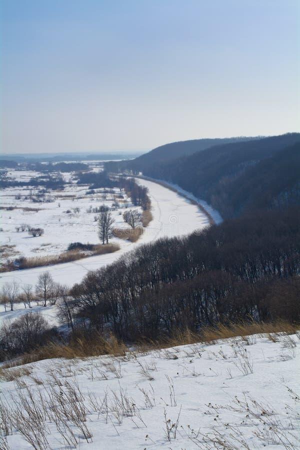 Aidar rzeka w Ukraina Zima Las i rzeka Vertical rama obraz stock