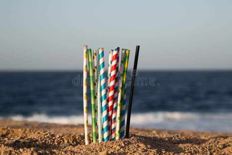 Aidez le coffre-fort l'océan - pailles de papier d'eco photo libre de droits