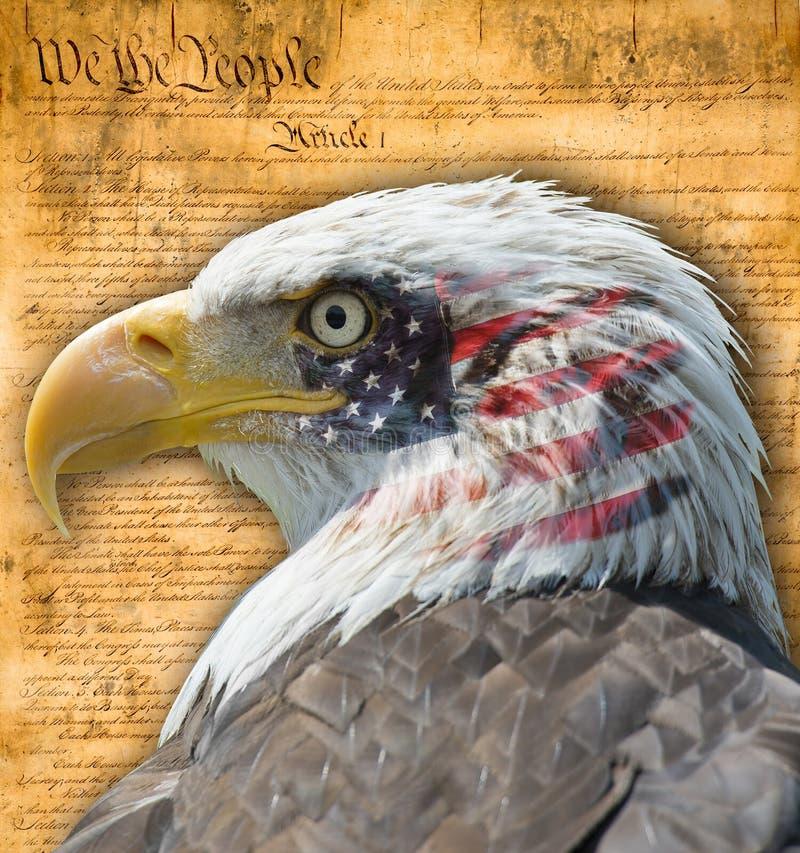 Aigle américain photos libres de droits