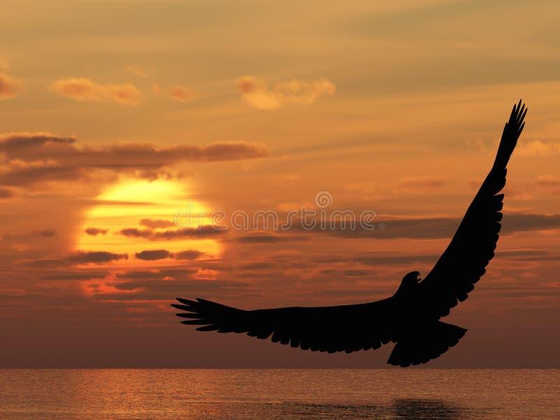 Aigle au-dessus d'océan illustration libre de droits