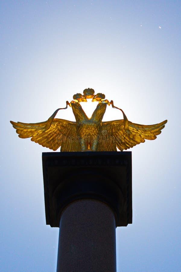 Aigle d'or photos libres de droits