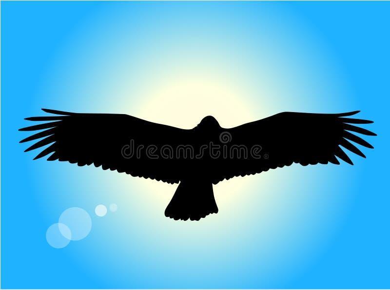 Aigle de vol illustration stock