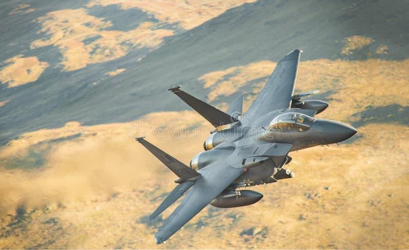 Aigle LL de la Grève F15 au Pays de Galles image libre de droits