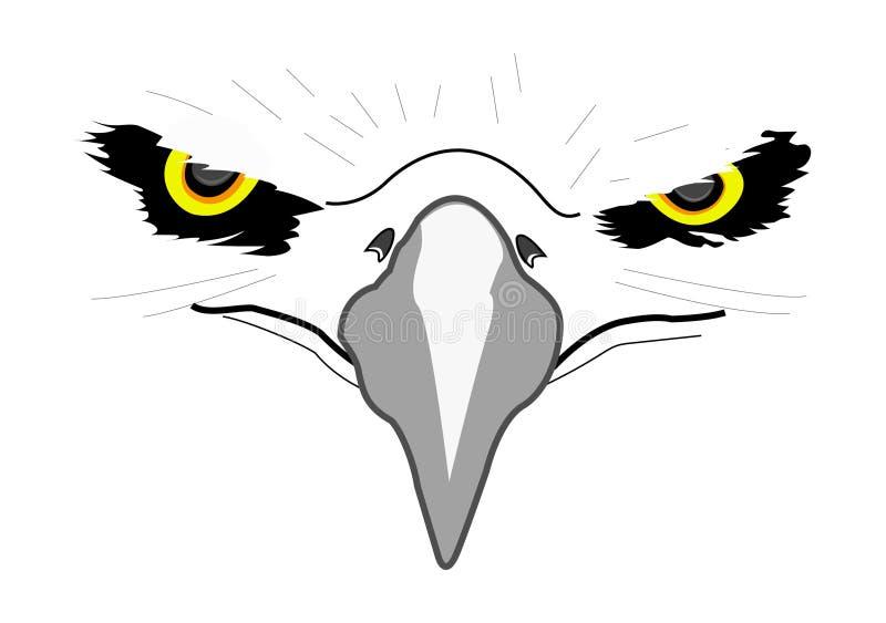 Aigle principal blanc illustration de vecteur