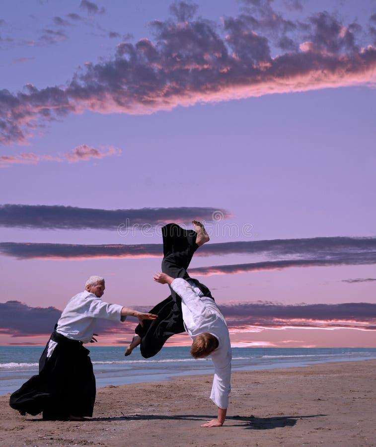 Aikido stock afbeeldingen