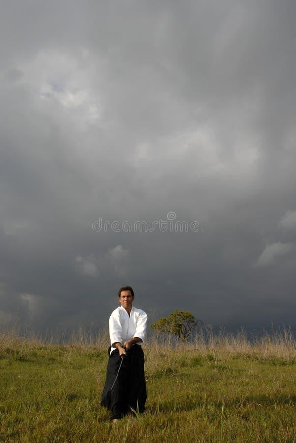 Aikido royalty-vrije stock foto's