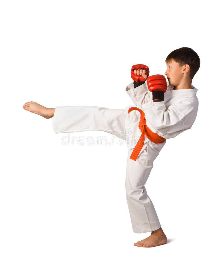 Download Aikido boy stock photo. Image of kungfu, martial, kimono - 13855146