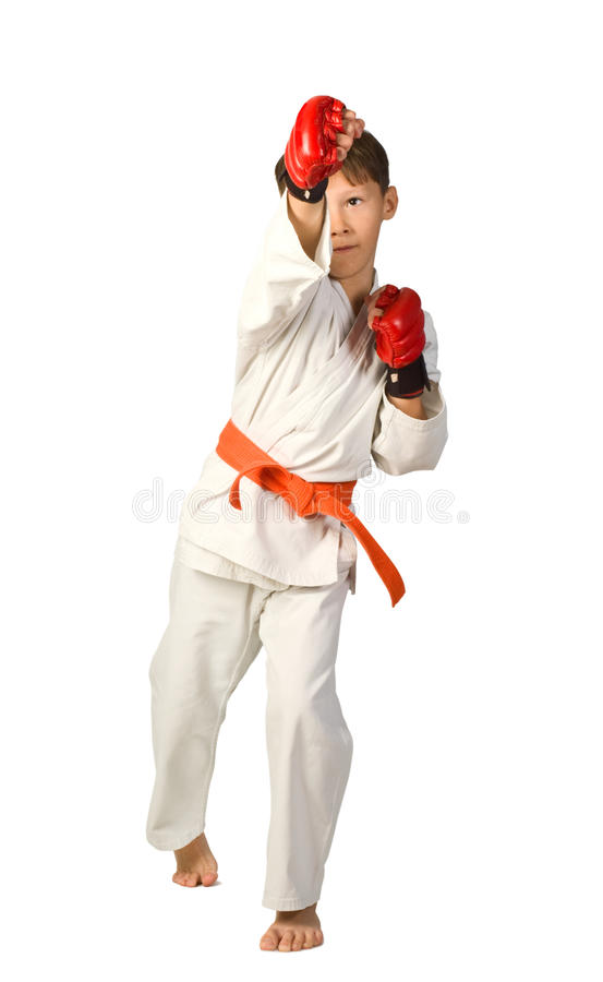 Aikidojunge lizenzfreies stockbild
