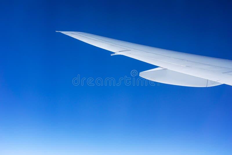 Aile d'avion d'isolement sur un ciel bleu gradué image libre de droits