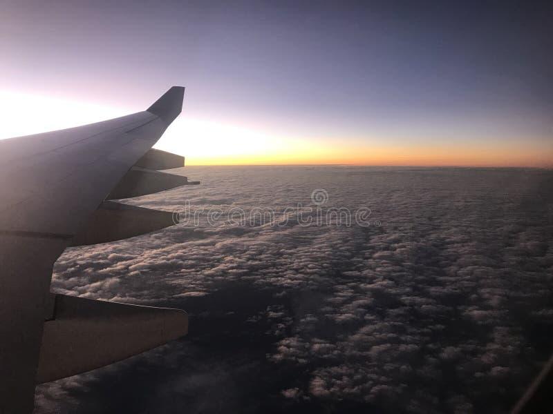 Aile de vol photo libre de droits