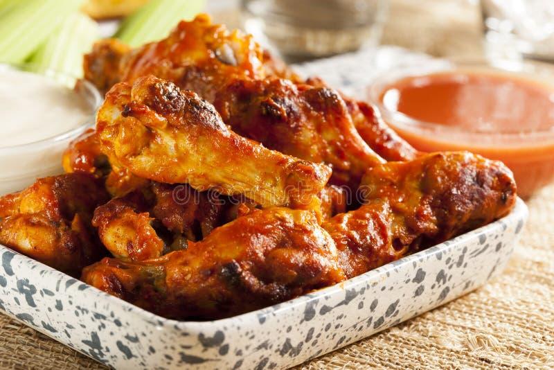 Ailes chaudes et de Spicey de Buffalo de poulet photos stock