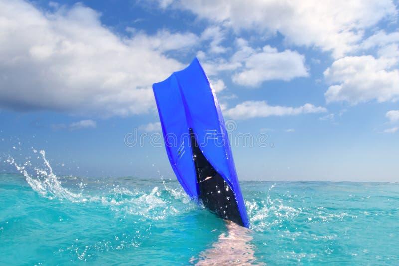 Ailette bleue de plongée éclaboussant dans la surface des Caraïbes photo libre de droits