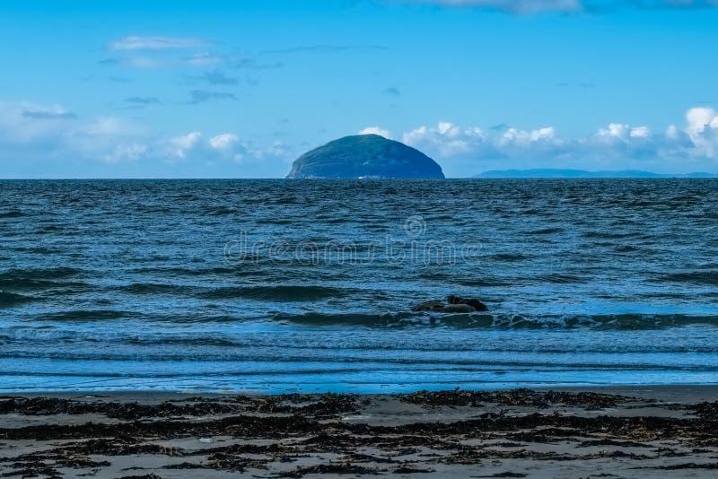 Ailsa Craig, havsväxt, kallt vatten och sand i södra Scotlands oss royaltyfri foto
