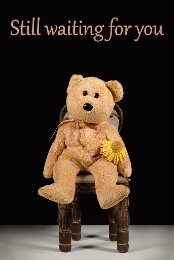 Ainda esperando o senhorita você espera do urso de peluche fotografia de stock royalty free