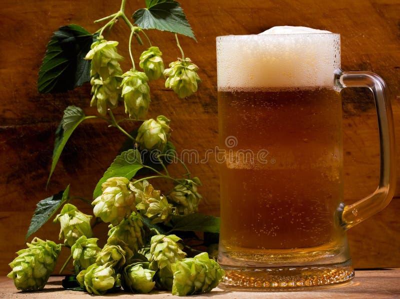 Ainda vida com a caneca de cerveja imagens de stock