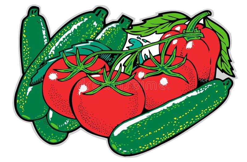 Ainda vida com courgette e tomates ilustração do vetor