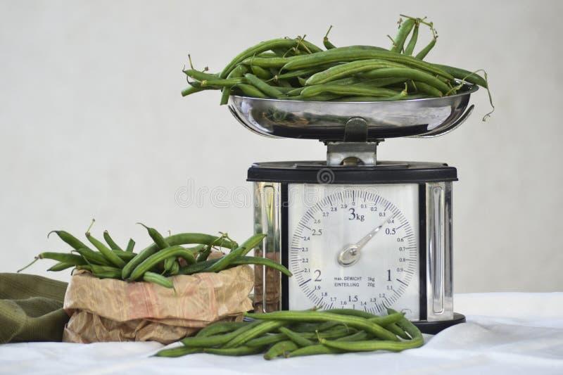 Ainda vida com os feijões verdes e a escala frescos do equilíbrio fotografia de stock royalty free