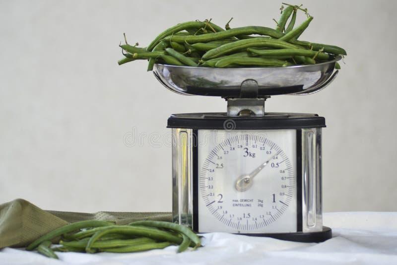 Ainda vida com os feijões verdes e a escala frescos do equilíbrio foto de stock