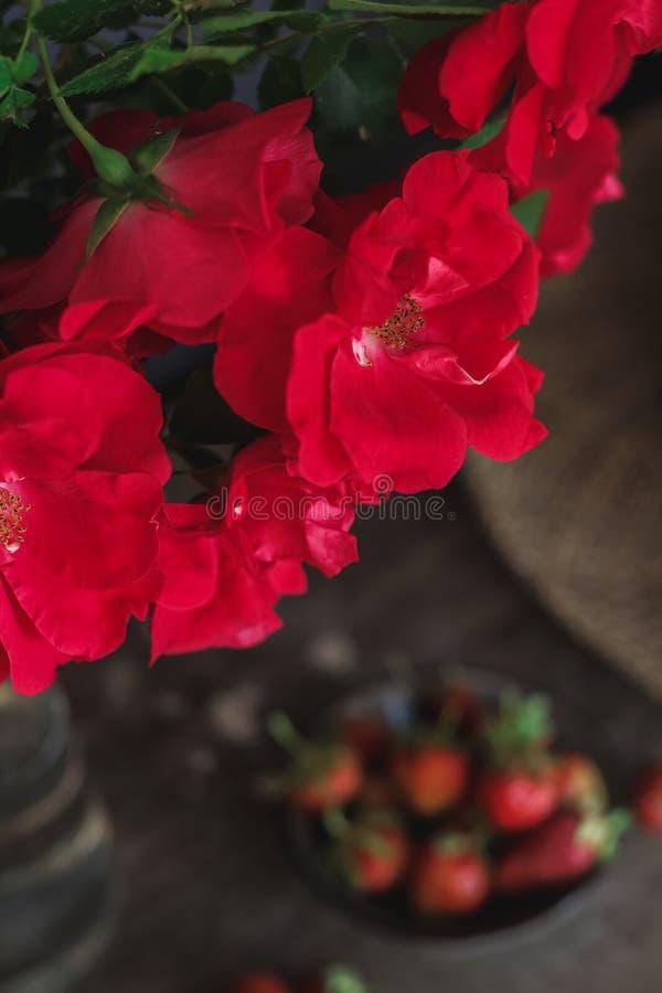 Ainda vida com rosas vermelhas, morangos e um chapéu fotos de stock royalty free
