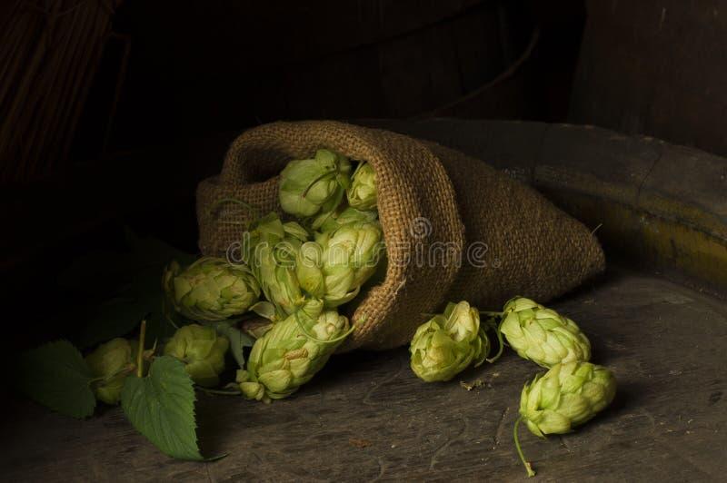 Ainda vida com um barril da cerveja imagem de stock royalty free