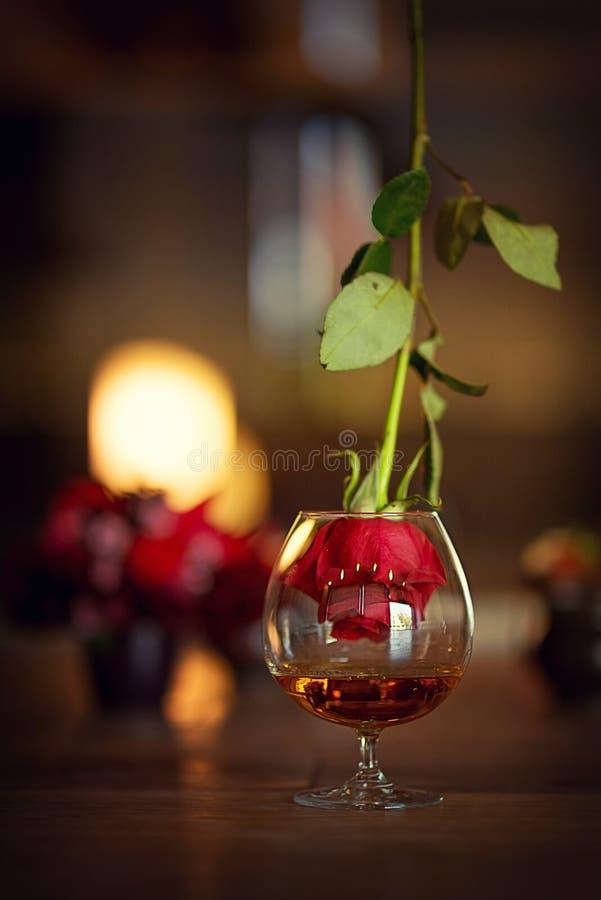 Ainda vida com vidro do conhaque e de uma rosa foto de stock