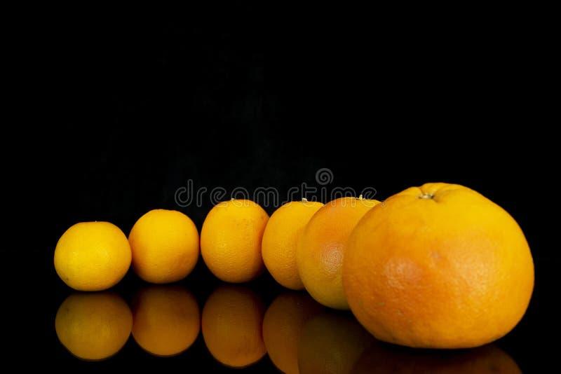 Ainda vida da fruta fresca imagem de stock royalty free