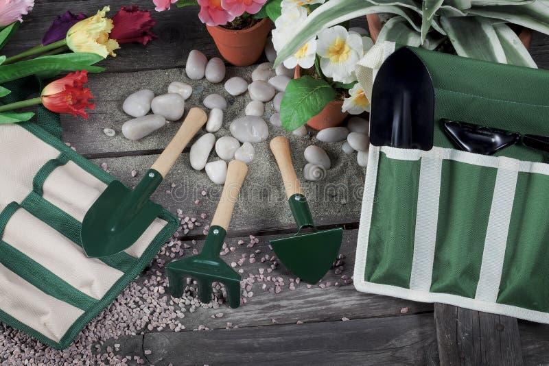 Ainda vida das ferramentas para a jardinagem de flores fotografia de stock