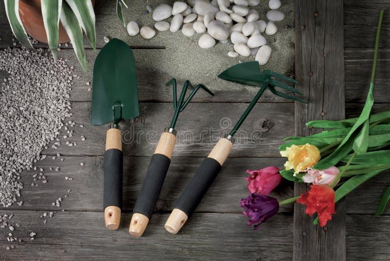 Ainda vida das ferramentas para a jardinagem de flores foto de stock royalty free